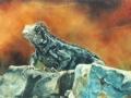 Iguana II